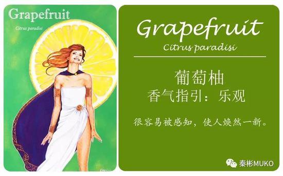 葡萄柚——乐观