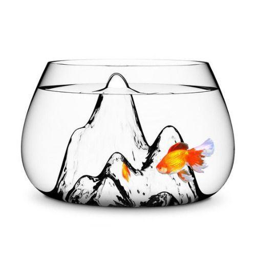 创意鱼缸 图片来源自fancy.to