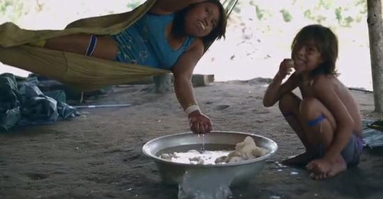 雅诺马马人正在口嚼木薯