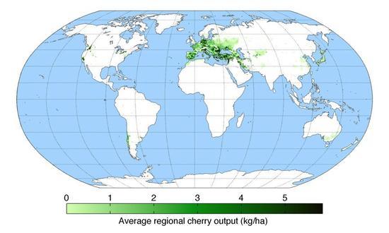 世界车厘子产区地图