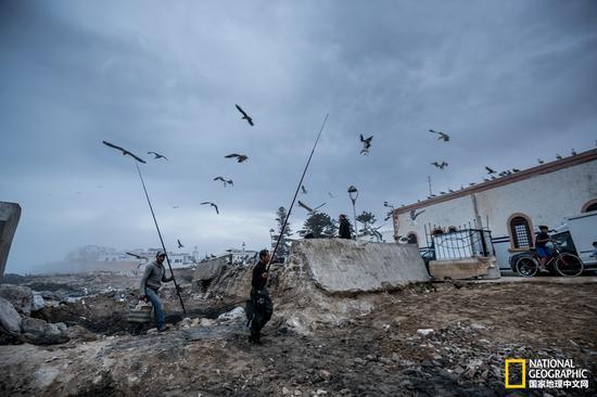 由于是个港口城市,每当暮色来临之前,当地的渔民便会陆续返回渔港