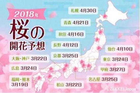 樱花时间表,图片来源于Qnews网站。