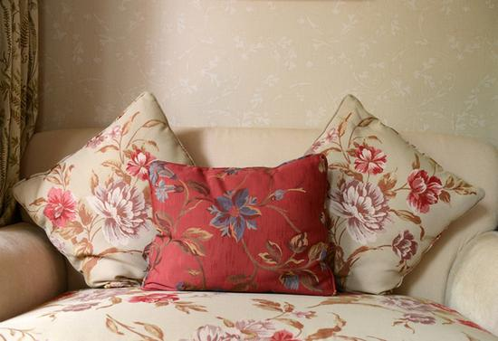 花卉靠垫 图片来源自海洛