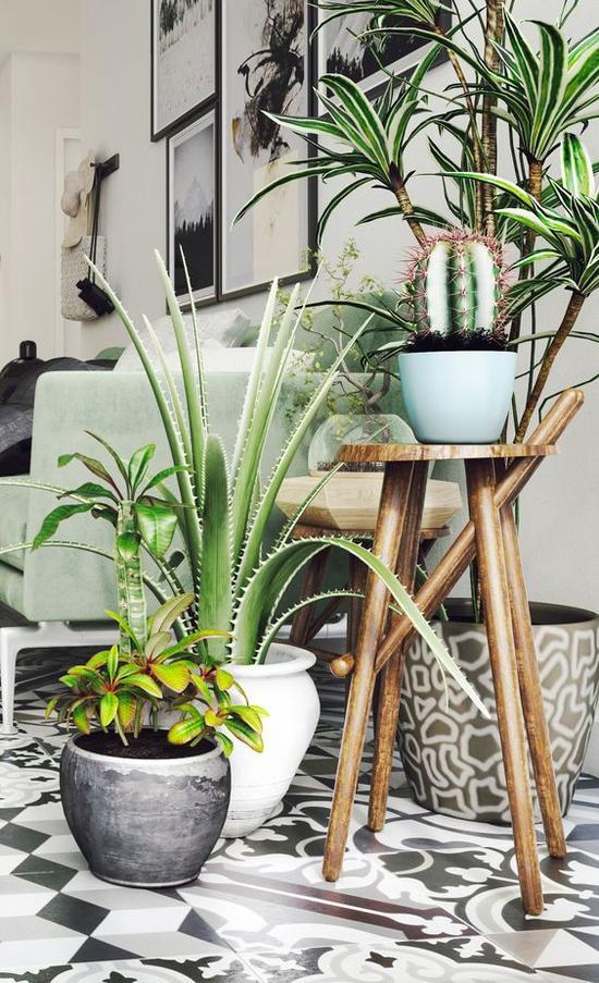 绿色植物加湿 图片来源自Behance