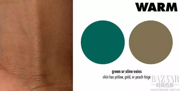 如果你的静脉出现绿色,你有一个温暖的暖色调。