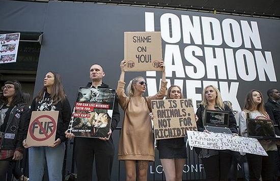 在国际时装周的会场周围,每年都会有动物保护组织在高声抗议