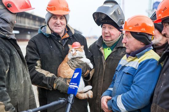 建筑工人与Mostik
