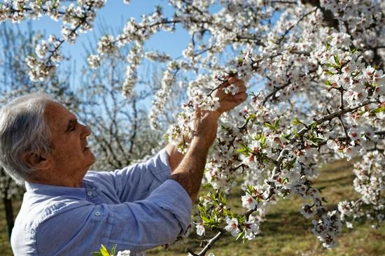 """欧舒丹发布""""自然向好""""生物多样性战略"""