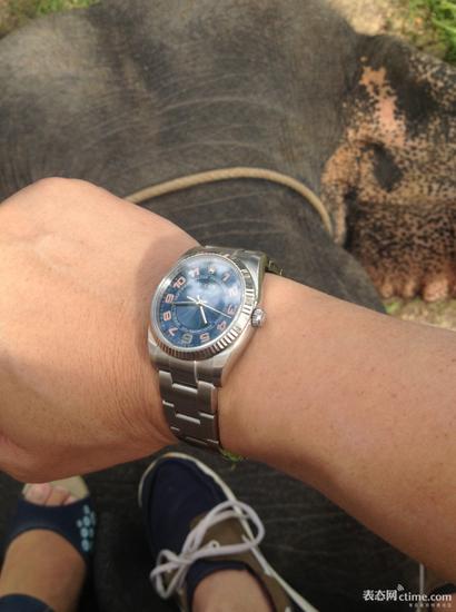 一项运动量不大,对手表避震有一定要求的运动――――骑大象