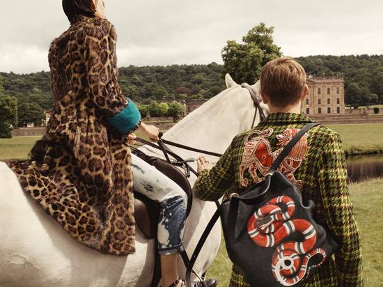 Gucci 将停止使用安哥拉兔毛