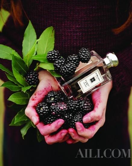 Jo Malone黑莓与月桂叶