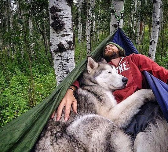 Loki和主人在森林中休憩