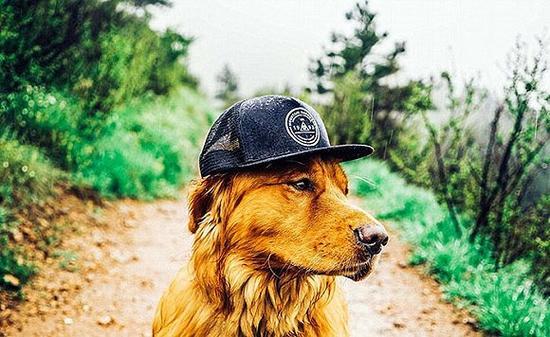 Aspen有着非常好的镜头感