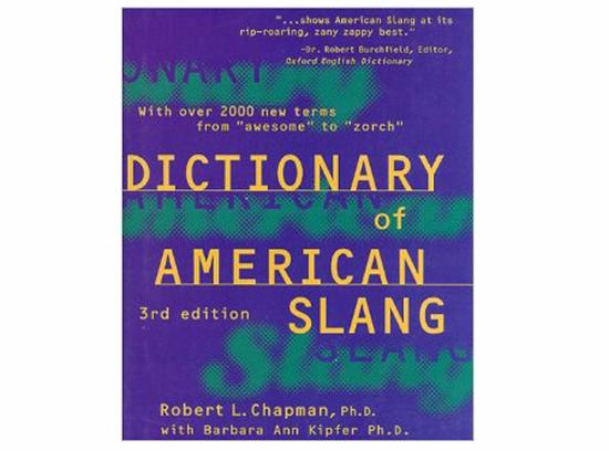 《The Dictionary of American Slang》