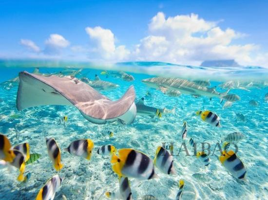 波拉波拉岛 Bora Bora