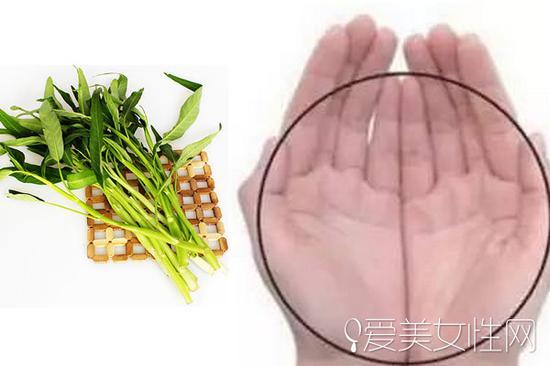 一捧的蔬菜