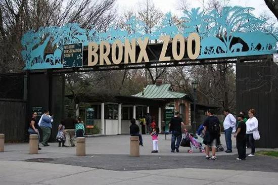 布朗克斯动物园