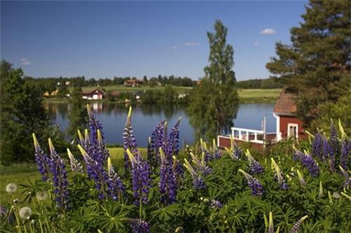 瑞典南部的田园