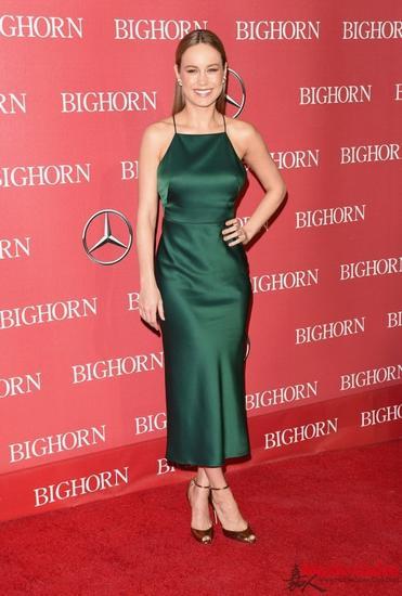 布丽·拉尔森(Brie Larson)