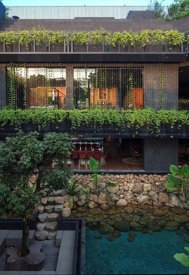 植物、建筑体与水(来源:gooood)