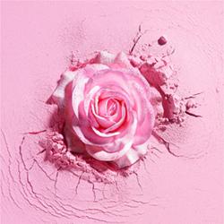 兰蔻玫瑰亮颜粉-2