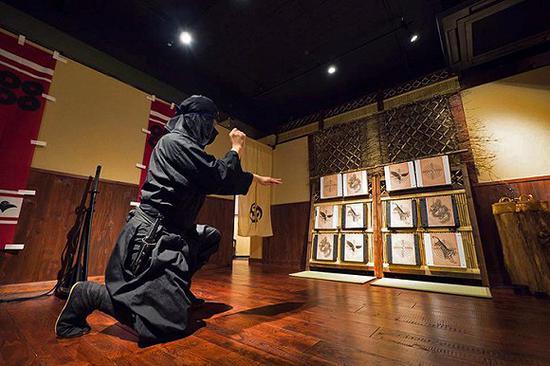 """在新宿的""""手里剑道场"""",游客可以学习忍者的攻击、藏身等技能"""