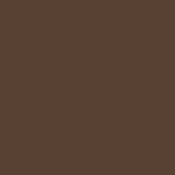 Louis Vuitton棕