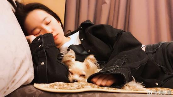 刘亦菲和狗狗