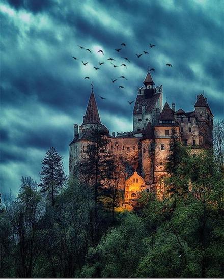 布朗城堡 图片来源自instagram.com