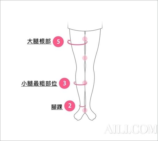 黄金美腿比例5比3比2
