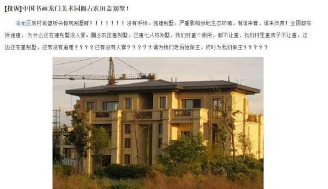 洛阳没收中国国画院20套违建别墅 前副院长回应