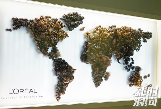 巴黎欧莱雅科研中心全球发色分布示意图