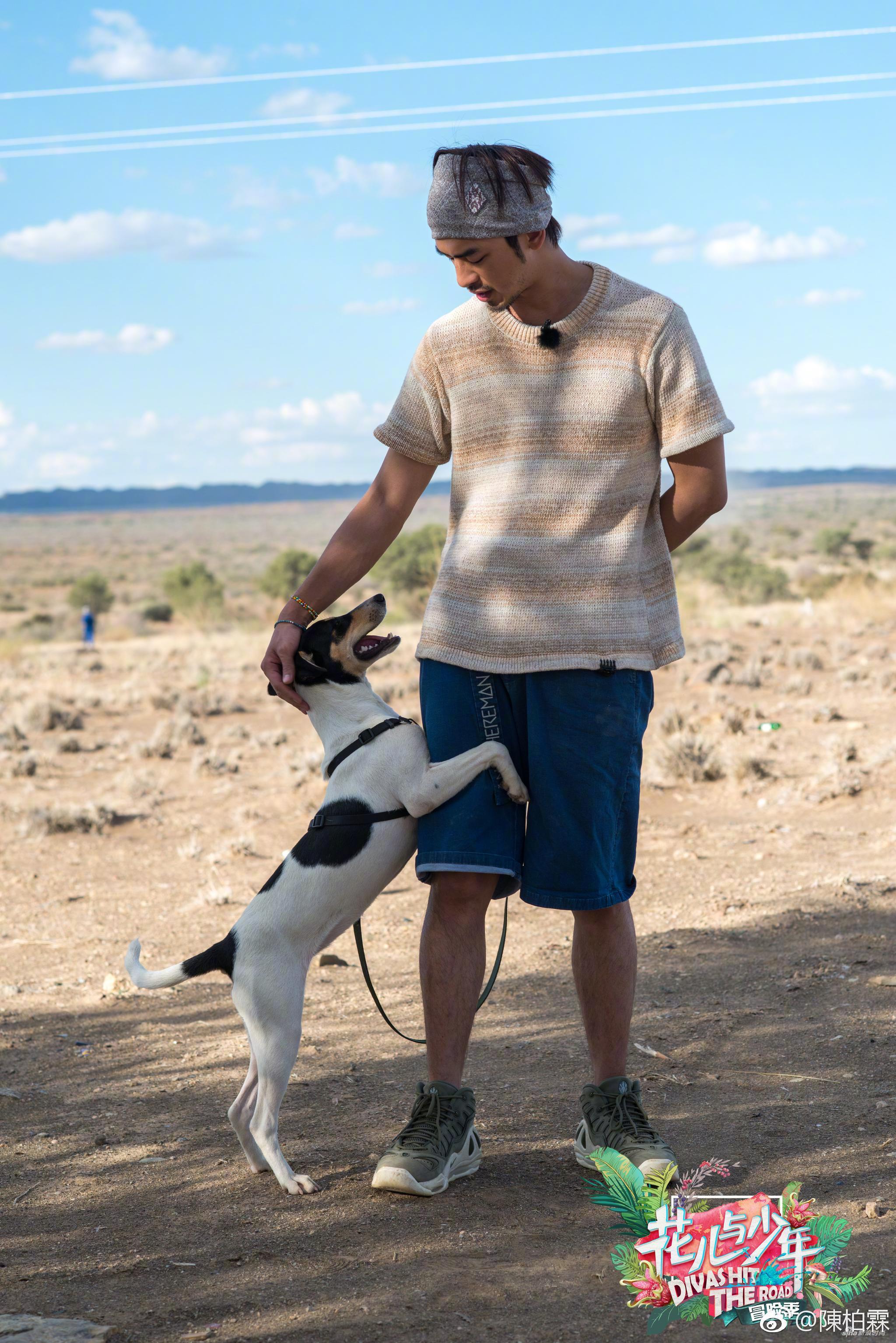 陪伴陈柏霖横穿纳米比亚的狗狗