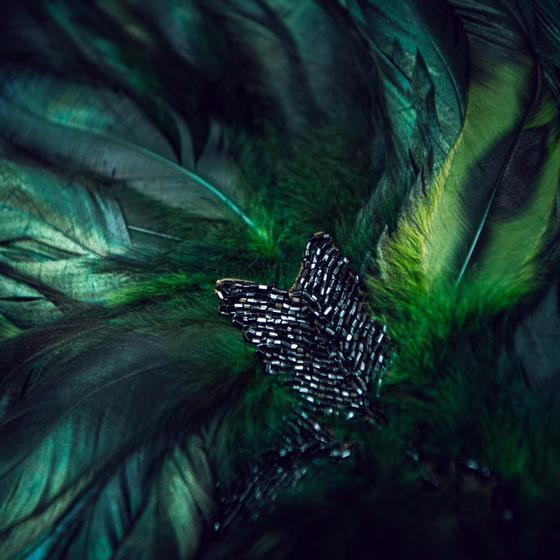 羽毛钉珠胸衣细节图