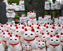 """东京""""幸运猫""""神庙成网红"""