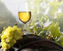漫威英雄适合什么品种葡萄酒