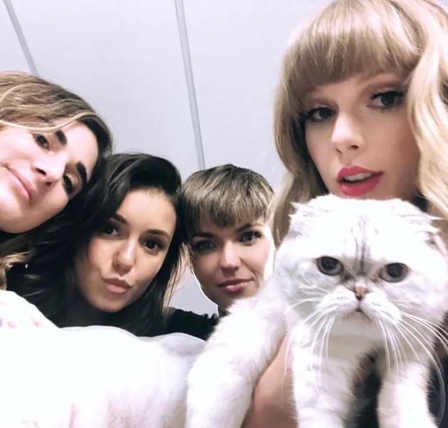 Taylor Swift和朋友们合照