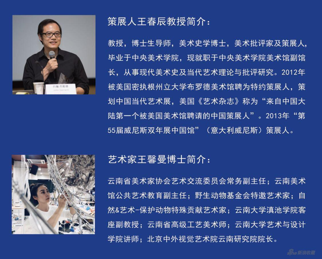 策展人、学术主持 王春辰教授 / 艺术家王馨曼博士简介