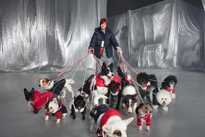 为宠物推出服饰的奢侈品牌阵营再扩大