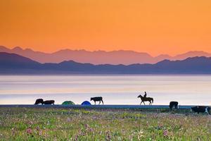 新疆的安利又来了 带你看看普通攻略之外的新疆