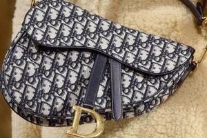 《财富》世界500强榜单发布 Dior成唯一上榜奢侈品