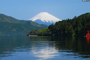 日本外相:将对中国游客逐步开启网上签证通道