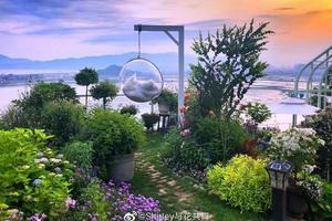 她40岁花300万在荒山造1500�O花园