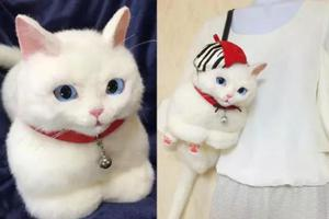 """这个日本主妇设计的""""猫咪包""""卖8万都断货!"""