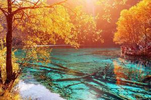 秋日旅行中最美的15个瞬间 你经历过几个?