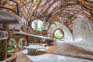 顶级的自然野奢酒店长这样 叫做艺术馆才对吧