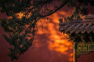 他拍遍中国半壁江山 带观众邂逅华夏极致风光