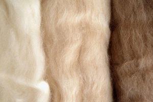 内蒙古羊绒制品价格降了30%!天冷了保暖品为啥凉了?