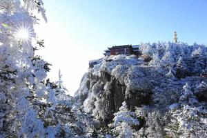 你见过雪后的峨眉山吗?简直像人间仙境