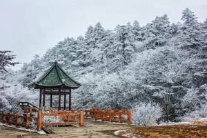 奔赴四川峨眉山看雪景 是对这个冬日的基本尊重